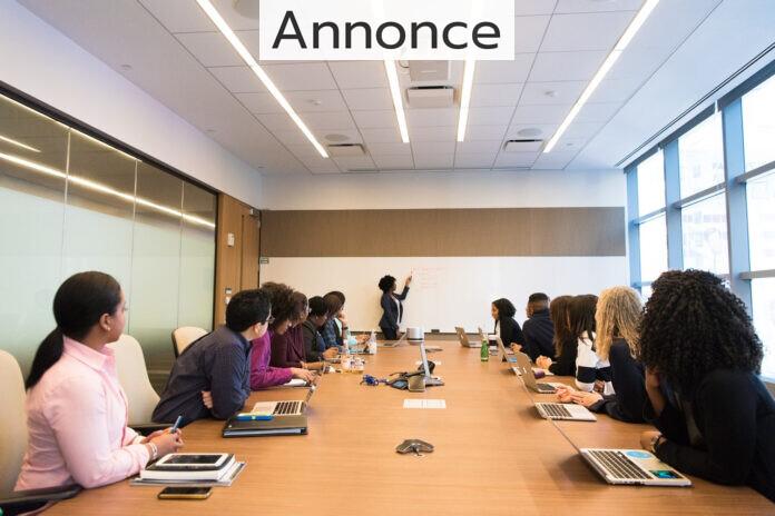 En præsentation i et mødelokale.